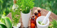 كيف تصنع الأدوية من الأعشاب والنباتات الطبية؟