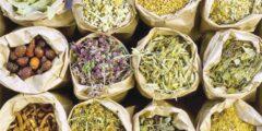 تجفيف الأعشاب والنباتات الطبية