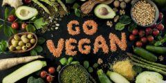 فوائد النظام الغذائي النباتي