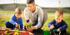 كيف تعاون اسرتك وأهمية تعاون أفراد الأسرة مع بعضهم
