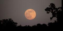 فوائد سورة القمر الروحانية