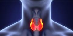 ما هي أعراض سرطان الغدة الدرقية وعلاجه؟