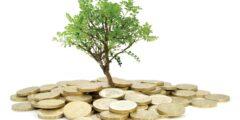 ما هو مقدار زكاة المال؟ والفرق بينها وبين زكاة الفطر