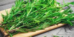 اعشاب لتقوية المناعة عند الاطفال وأفضل الأطعمة