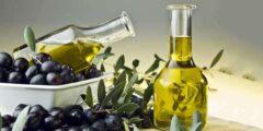 فوائد زيت الزيتون للجسم