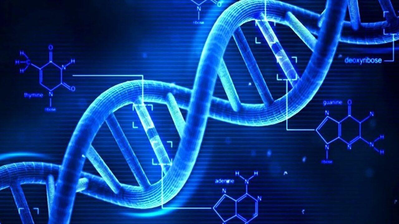 الأمراض الوراثية والعيوب الخلقية
