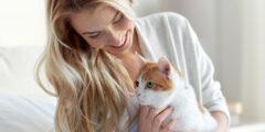 ما هو داء القطط وما هي اعراضه