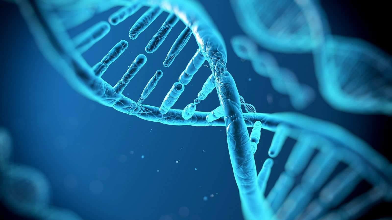خصائص الشفرة الوراثية وأهميتها