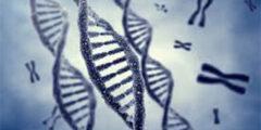 الأمراض الوراثية النادرة